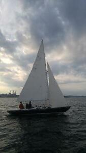 Roué 20 Sailboat and Trailer - Reduced Price