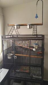 MINT PARROT CAGE WITH LOTS OF TOYS AND STAND