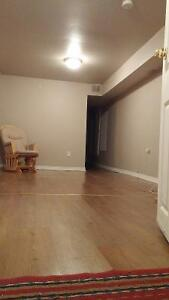 SELF-CONTAINED BASEMENT BACHELOR APT.-INCLUDES UTIL.-BASIC CABLE