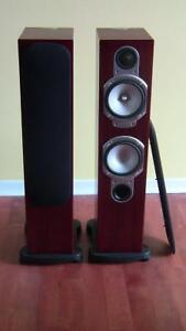Monitor audio RS 6