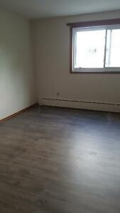 Renovated Quiet, Clean Large 2 bedroom, Fairview, Heat, Hot W