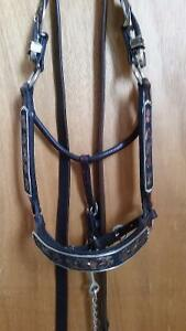 Beautiful Show Halter