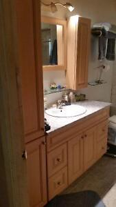 Bathroom vanity with sink and cabinets