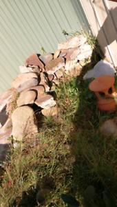Free garden rocks for self pick up Beverly Hills Hurstville Area Preview