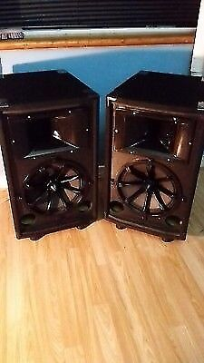Custom PA Speakers VOLT