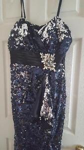 Beautiful Navy and silver dress