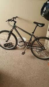 Norco pinnacle for sale