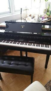Grand Casio-keyboard Piano