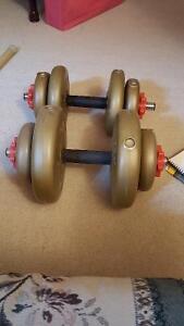 Adjustable dumbell set for sale