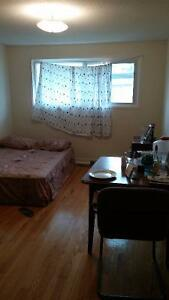 BEAUTIFUL LARGE ROOM IN A TOWN HOUSE FOR A FEMALE