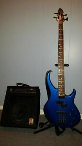 Peavy bass and Eden practise amp.