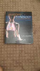 Anatomy & Physiology Seventh Edition for Sale!