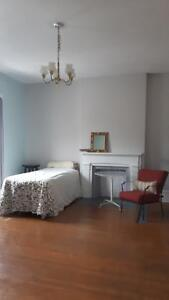 Very Large Furnished Room Downtown