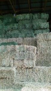 Square Hay and Straw Bales London Ontario image 1