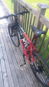 reebok 21 speed mountain bike off road