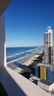 Room in Surfers Paradise high rise for 2 weeks only