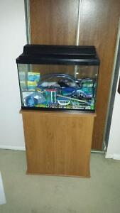 Fish Tank 20 Gallon and Stand $200.00