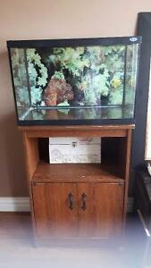 40 gallon fish tank with all accessories