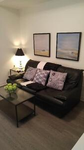 Furnished Brand New 1 Bedroom Apt - Available Aug 1st