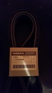 Drive Belt OEM Nissan