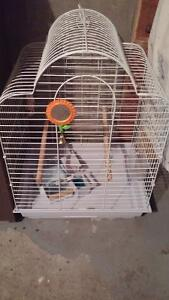 Bird cage with accessories& food