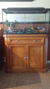 2 Aquariums de 35 gallon