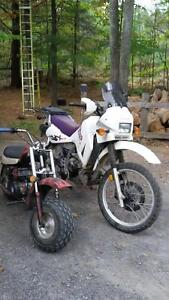 KLR and Fatcat for trade