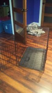 Dog kennel brand new