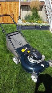 Yard Works Lawnmover