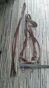 Dark Leather Headstall with silver, and bit Strathcona County Edmonton Area image 1