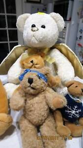 SELECTION OF TEDDYS (from $5 each) Lesmurdie Kalamunda Area Preview