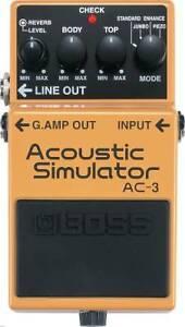 Accoustic Simulator Boss