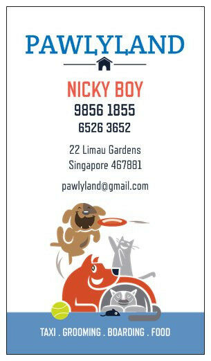 Pet Taxi, Pet Boarding, Pet Grooming: Affordable & Reliable Pet Services For All Pet Lover Owners