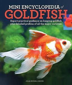 Mini Encyclopedia Goldfish Expert Practical Guidance on Keepi by Russell-Davies