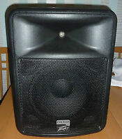 """Self powered Peavey speakers 800 watts each 12"""""""