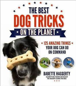 The-Best-Dog-Tricks-on-the-Planet-106-Amazing-Things-Your-Dog-Can-Do-on