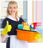'Dust-busters' - house cleaning