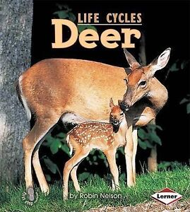 Deer by Robin Nelson (Hardback, 2009)