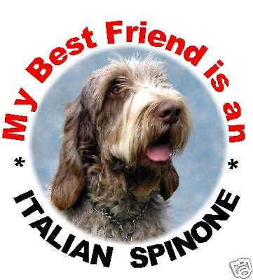 2 Italian Spinone Car Stickers By Starprint