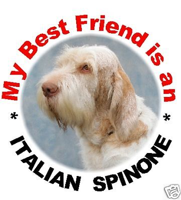 2 Italian Spinone Round Car Stickers By Starprint - Auto combined postage