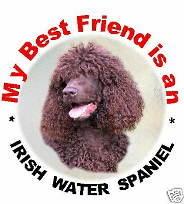 2 Irish Water Spaniel Car Stickers By Starprint
