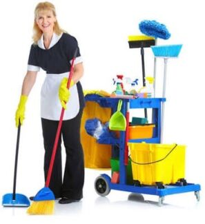 Wanted: Cleaner wanted