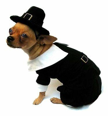 Pilgrim Boy Costume for Dogs - Size 2 (9.25