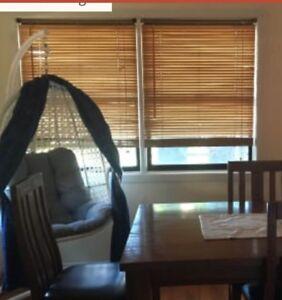 Room for rent - Ballina NSW Ballina Ballina Area Preview