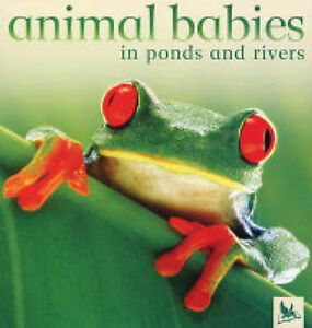 Very Good, Animal Babies in Ponds and Rivers, , Book