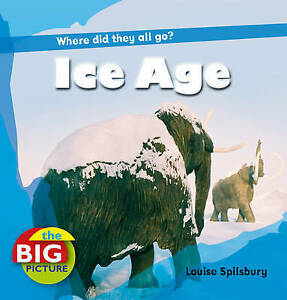 Ice Age (Big Picture) (The Big Picture), New, Ganeri, Anita, Spilsbury, Louise B