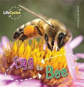 Egg to Bee by Camilla De La Bedoyere (Paperback / softback, 2016)