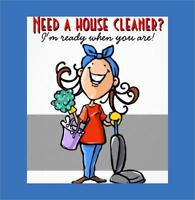 Need a Cleaning Lady?