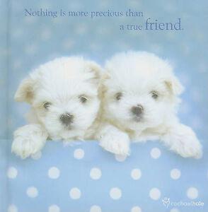 Good, True Friend: 1 (Rachael Hale Giftbooks RG059), wpl, Book