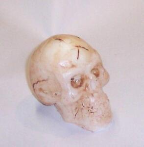 Skull Mold Ebay